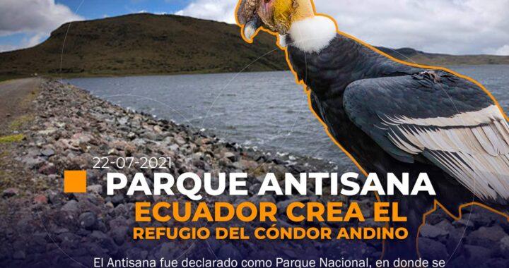 Ecuador crea un parque como refugio para el cóndor andino.
