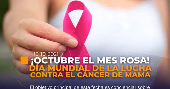Día Mundial contra la Lucha del cáncer de mama